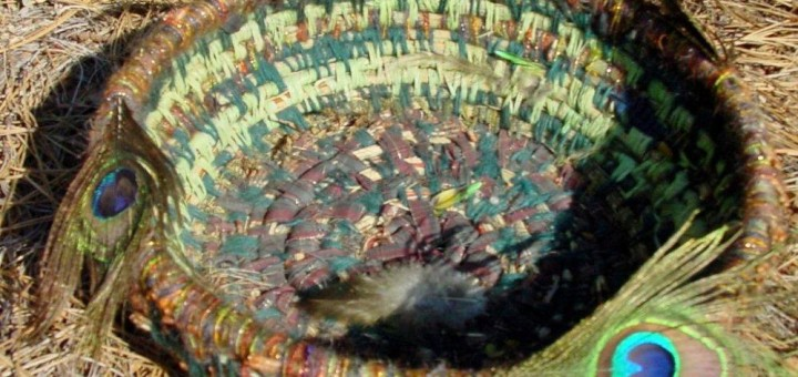 pine needle basket with feathers